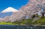 CHINA – COREEA DE SUD – JAPONIA