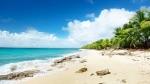 Revelion 2020 - Sejur plaja Punta Cana, 10 zile - 30.12.2019