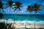 Sejur in Barbados
