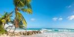 Sejur plaja Barbados 9 zile - ianuarie 2020