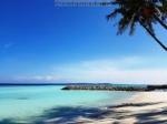Sejur plaja Maldive, 10 zile - iulie 2020