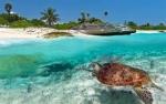 Revelion 2020 - Sejur plaja Zanzibar, 11 zile